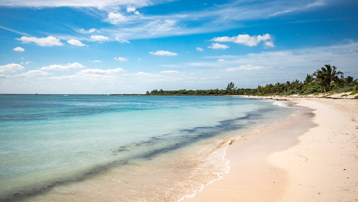 Playa Del Carmen Riviera Maya