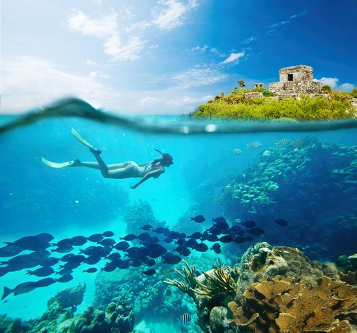 Beautiful coral reef Caribbean sea in Tulum